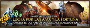 arena_tournament_2009_banner