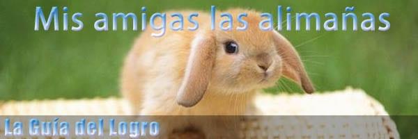 guia_logro_alimaas