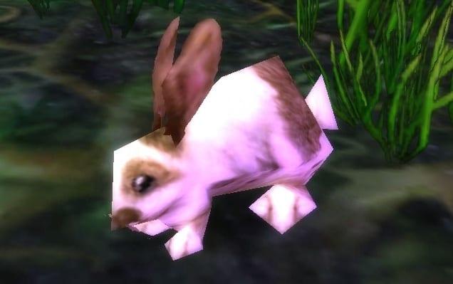 conejo_primaveral