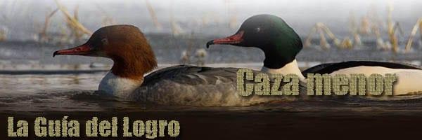 guia_logro_caza_menor