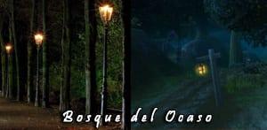 bosque_ocaso_real_peque