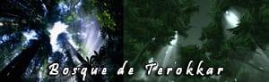 bosque_terokkar_real_peque