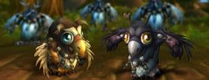 banner-moonking-hatchling