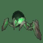 arana-esquisto-diminuta