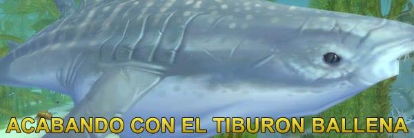 banner-acabando-tiburon-ballena