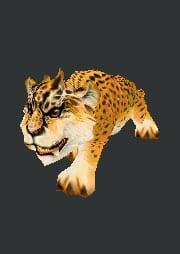 cachorro-guepardo