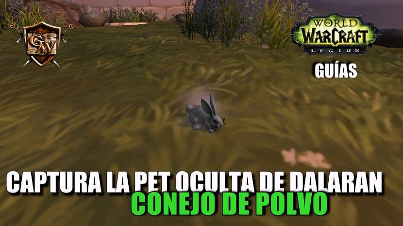 Captura la pet oculta de Dalaran: Conejo de Polvo