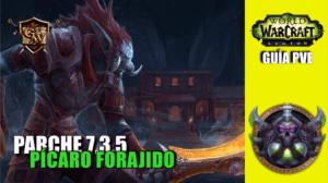 picaro-forajido-parche-7.3.5