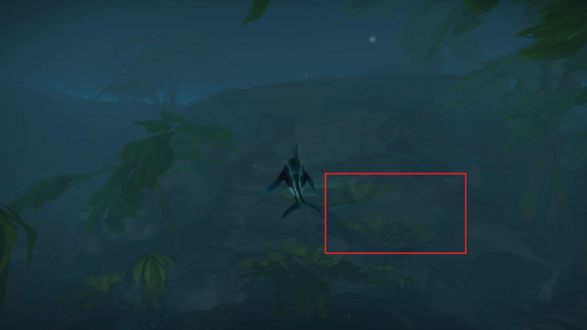 Guía para la mascota Baa'l, la cabrilla endemoniada - ¡Mascota secreta de Battle for Azeroth!